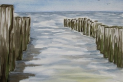 Am Strand bei Haamstede (NL)