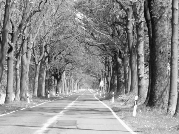 Fotoserie Auf dem Weg 3