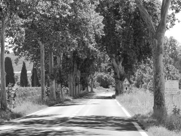 Fotoserie Auf dem Weg 12