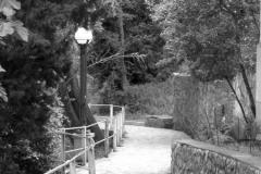 Fotoserie Auf dem Weg 8
