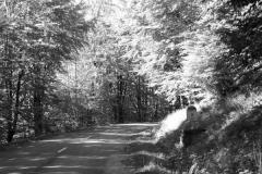 Fotoserie Auf dem Weg 13