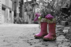 Fotoserie Farbe im Leben
