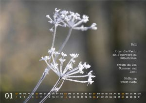 Kalender 2019: Januar