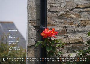 Kalender 2019: Juli