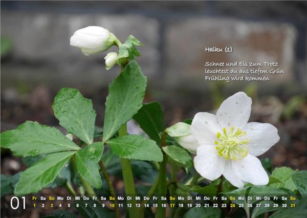 Kalender 2021: Januar