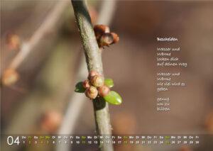Kalender 2021: April